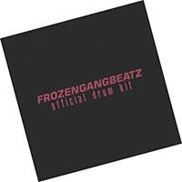 FrozenGangBeatz Drum Kit REDDIT Vol 1-2-3 (2021) скачать