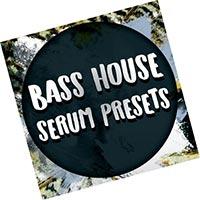 Bass House Presets Serum (2021) скачать пресеты Torrent Free Download
