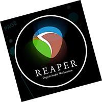 Reaper 6.23 скачать бесплатно русская версия торрент Cockos DAW крякнутый - полная версия
