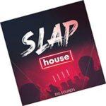 Slap House Sample Pack