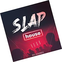 Slap House Sample Pack (2021) Infinity Torrent скачать бесплатно